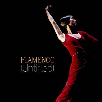Flamenco (Untitled)