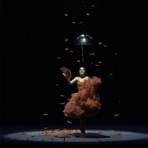 flamenco_image1