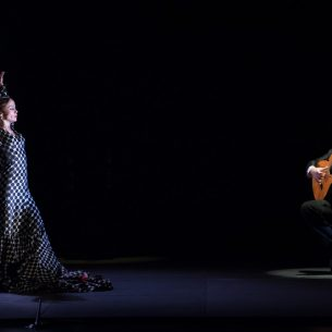 flamenco_image3