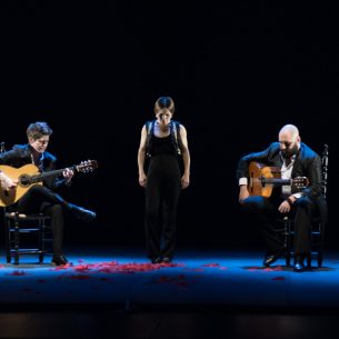 flamenco_image6